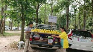 Smallholder Farmers selling their farm products near the Government Offices in Chiang Mai